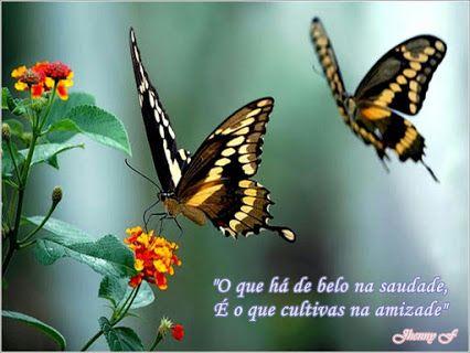 Luciana Fentanes - Google+