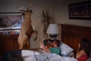 Grown Ups 2 Trailer Is A Deer Peeing On Adam Sandler Funny