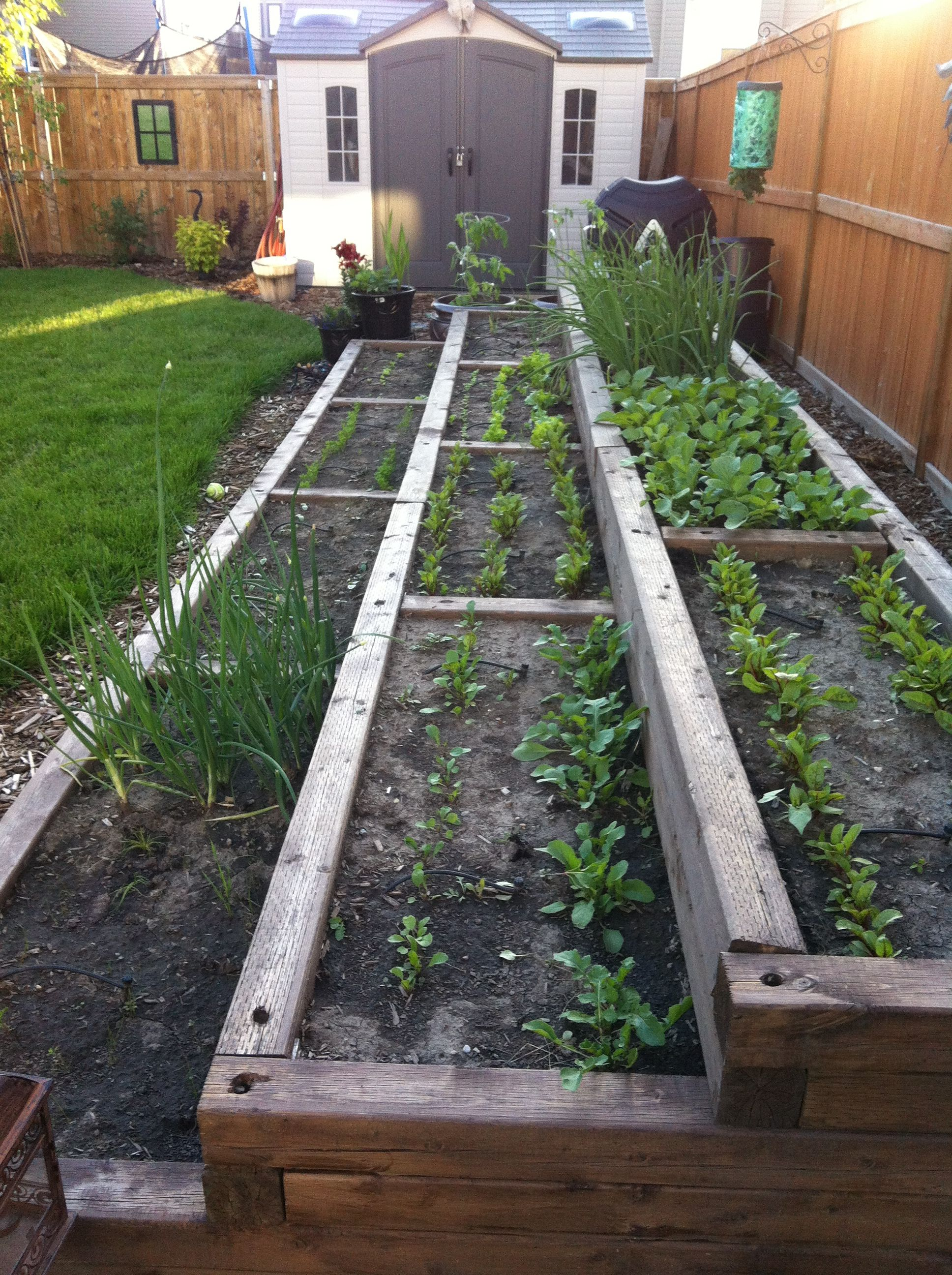 3 tiered vegetable garden. | Garden layout vegetable on Tiered Yard Ideas id=57821