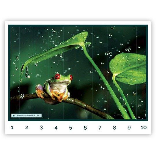 Frog Number Puzzle on MontessoriByMom.com