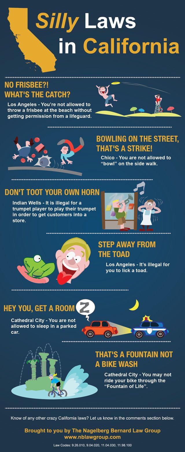 INFOGRAPHIC Silly Laws In California Humor Pinterest - The most bizarre laws of the us get broken in this ironic photo series