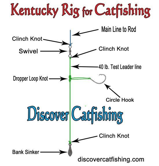 Catfish rigs how to tie a catfish rig catfish rigs for What is the best time to fish