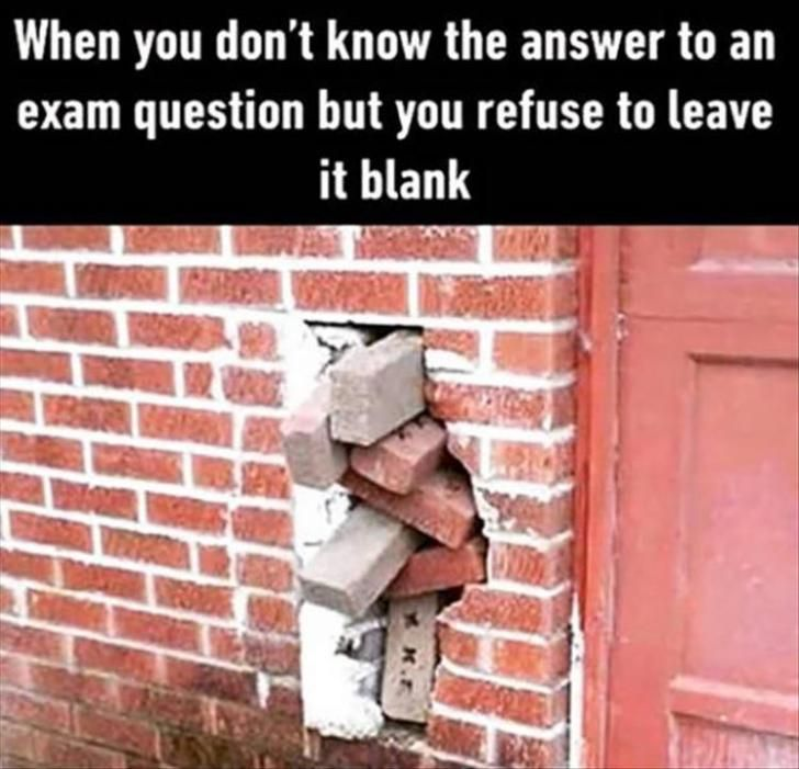When You Don T Know The Answer To An Exam Question But You Refuse To Leave It Blank Exams Memes Funny Pictures Relatable
