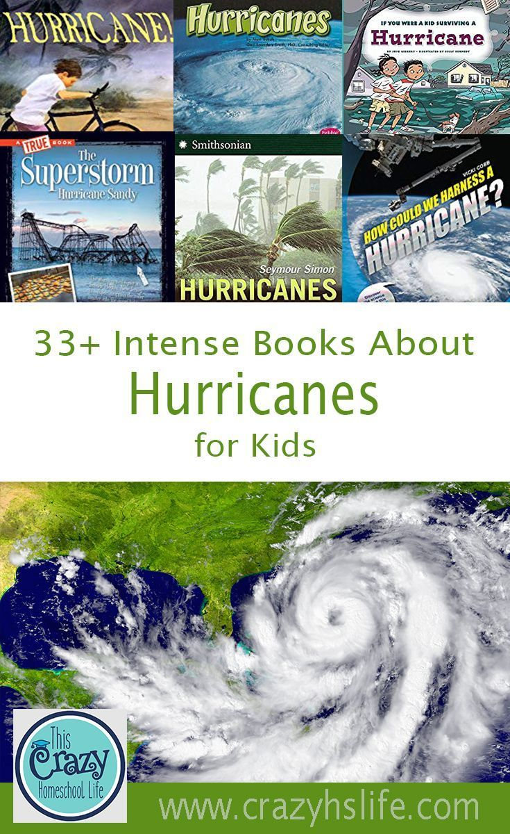 33+ Intense and Informative Hurricane Books for Students