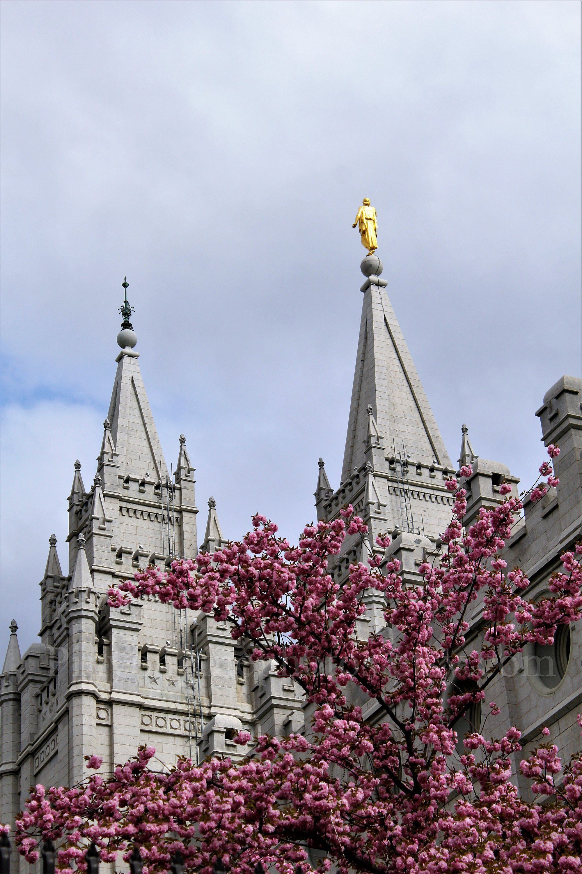 Salt Lake City Temple In Spring This Vertical Photo Available In A Fine Art Print Gallery Wrapped Canvas Or Photo Greeting Card Landscape Photography Fine Art Prints Fine Art