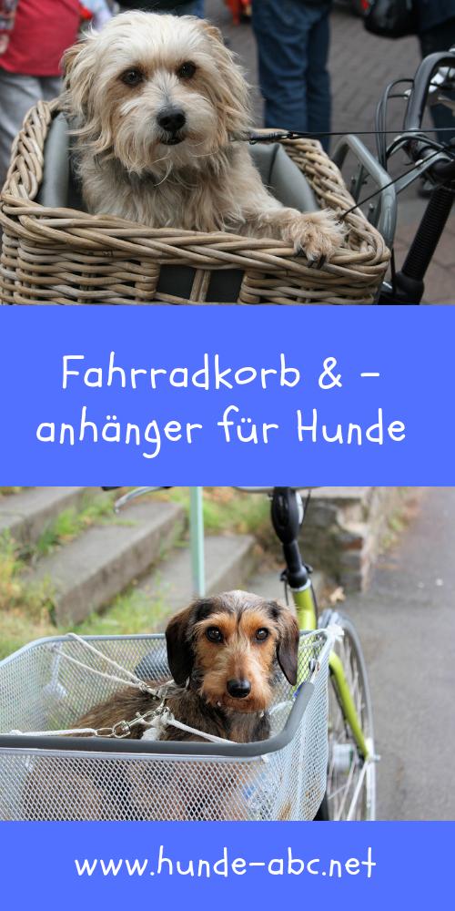 Fahrradkorb Anhanger Fur Hunde Hund Fahrrad Fahrradkorb Transport Hund