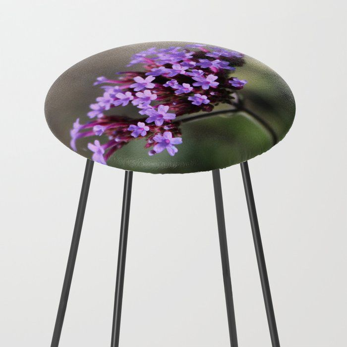 Enjoyable Macro Of A Purple Flower Counter Stool Our Counter Stools Andrewgaddart Wooden Chair Designs For Living Room Andrewgaddartcom