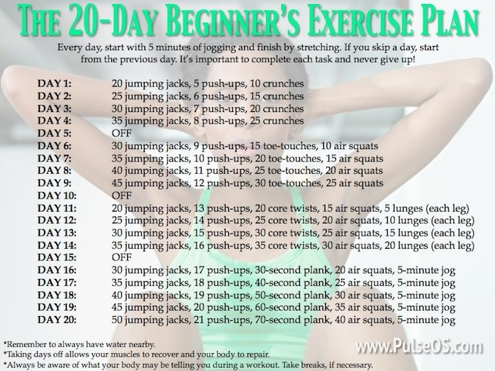 Fitness Workout Plan For Beginners Workout Pinterest