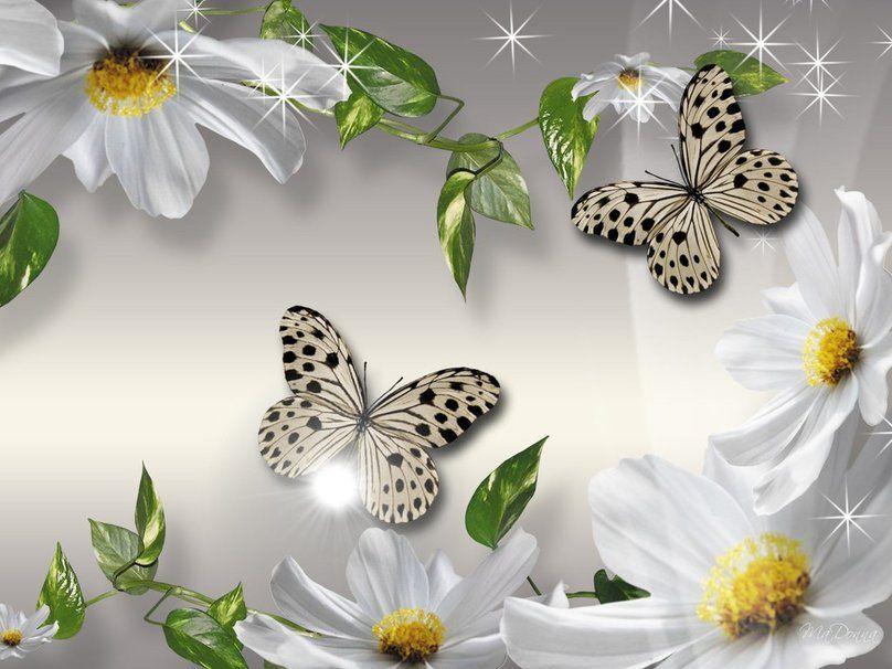 glitter♥ blanco wallpaper