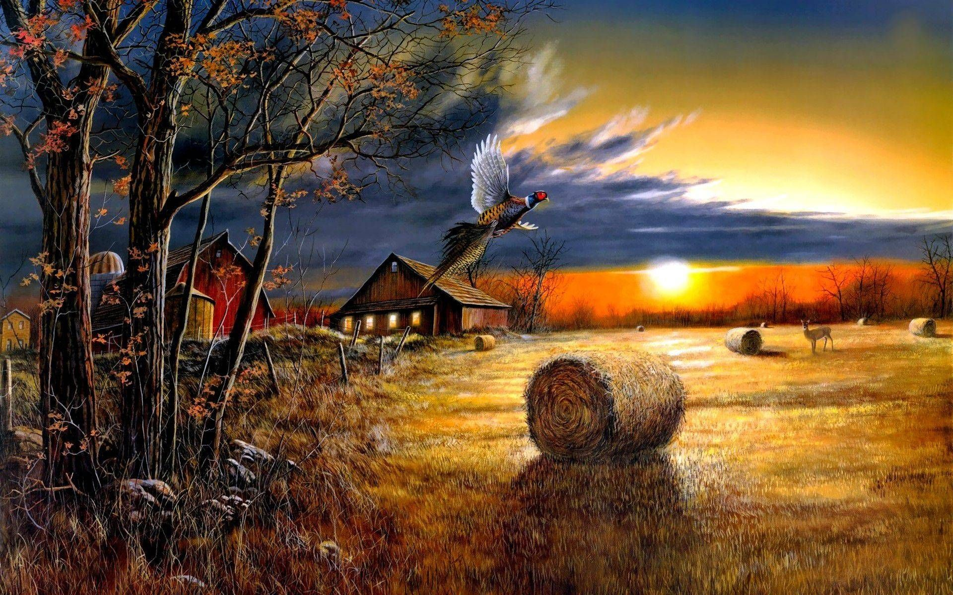 Farm Sunset Wide Desktop Background wallpaper free Обои