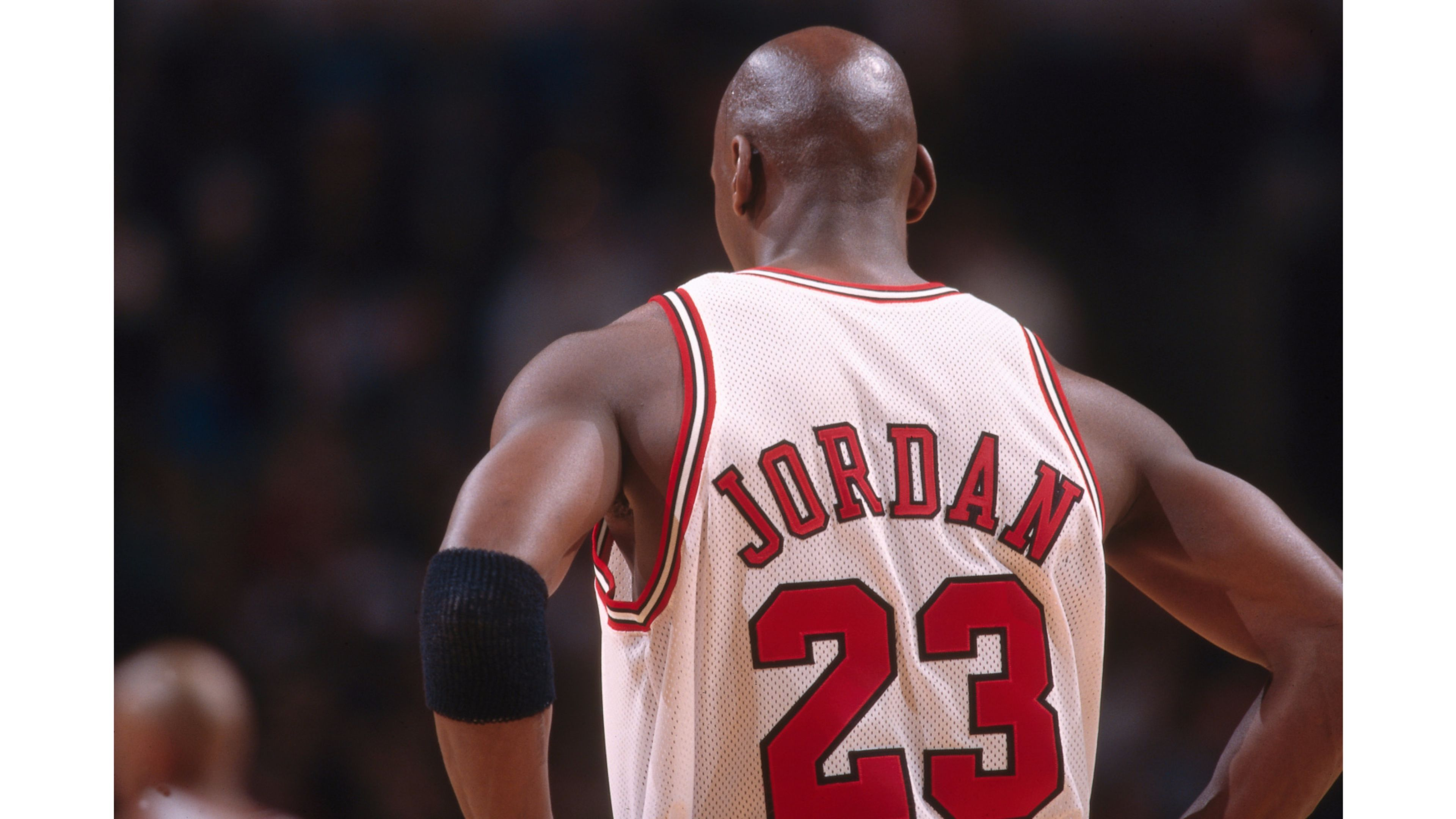 Jordan 23 Michael Jordan 4K Wallpaper Download Wallpaper