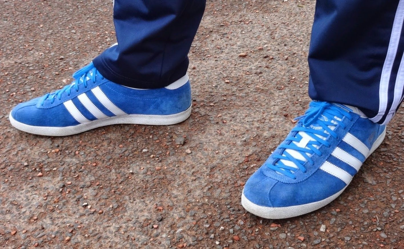 huge selection of 8525b 7d5a0 Adidas Gazelle Bluebird and white     on feet on the street