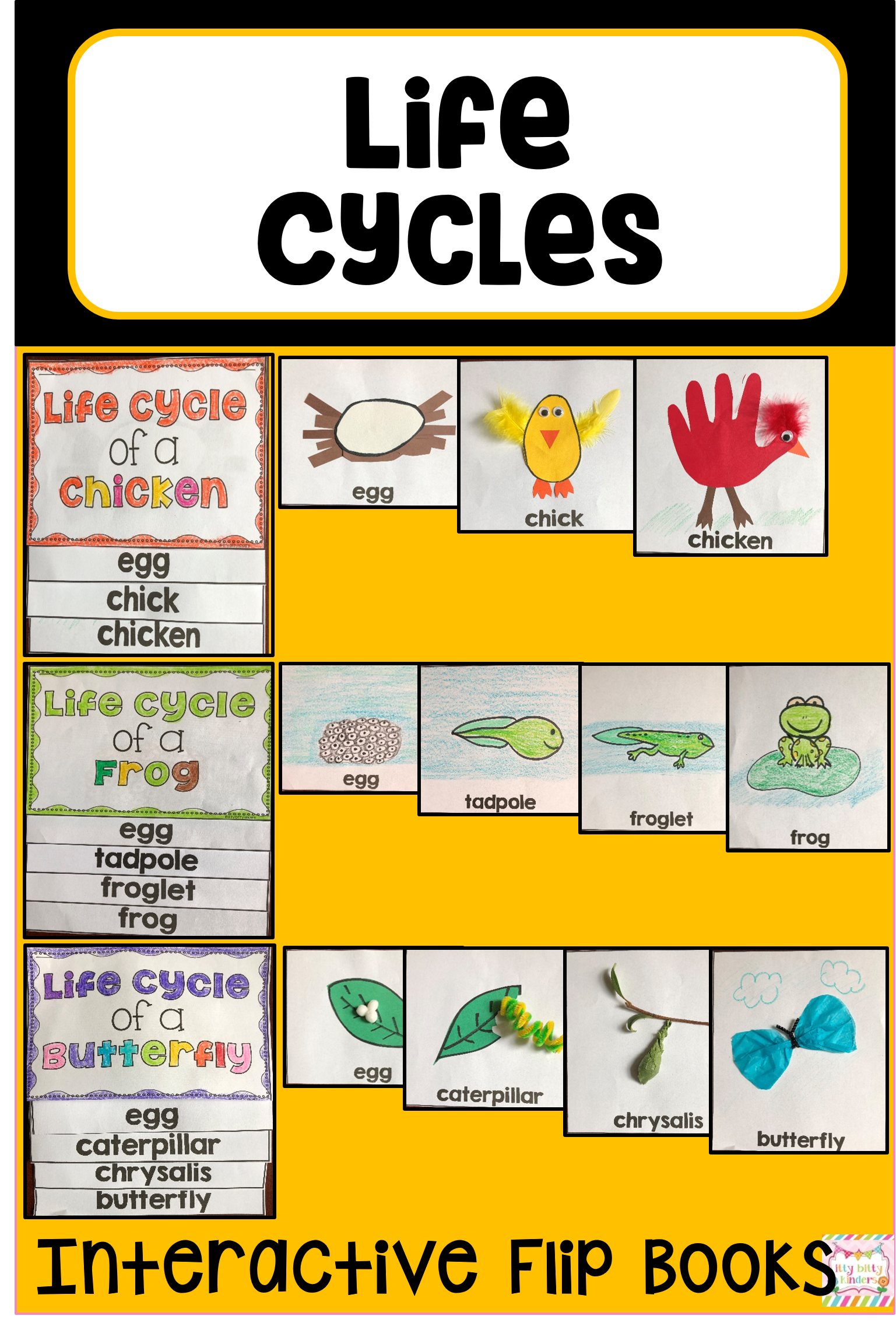 Life Cycle Bundle Butterfly Frog Chicken