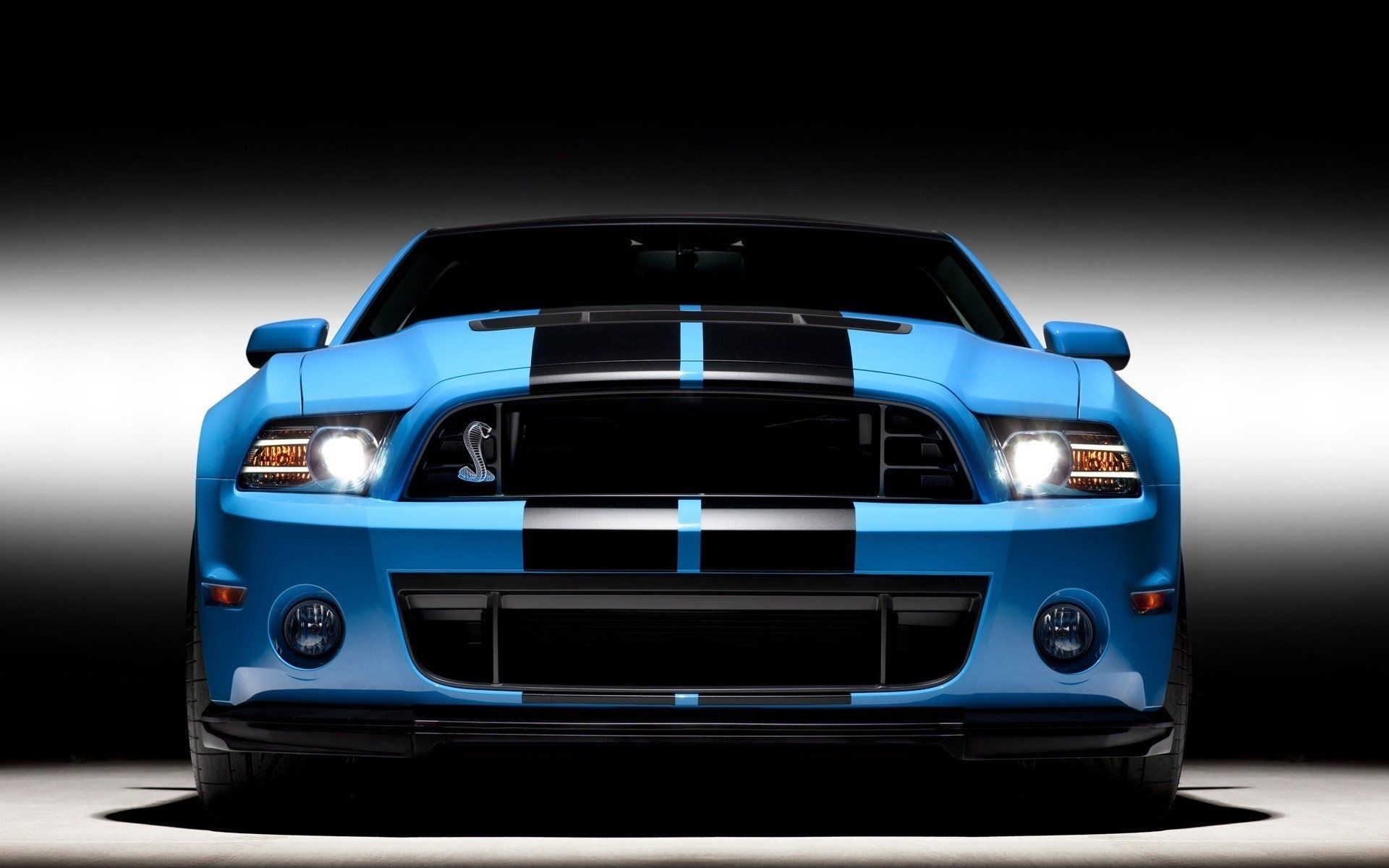Ford Mustang Shelby Gt Hd Wallpapers Backgrounds Ford Mustang