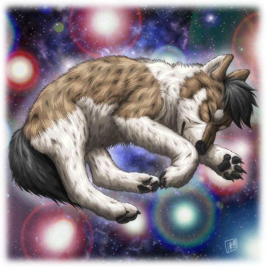 Wolf pup by sheltiewolf sleeping wolf wolf pup browsing deviantart anime wolf