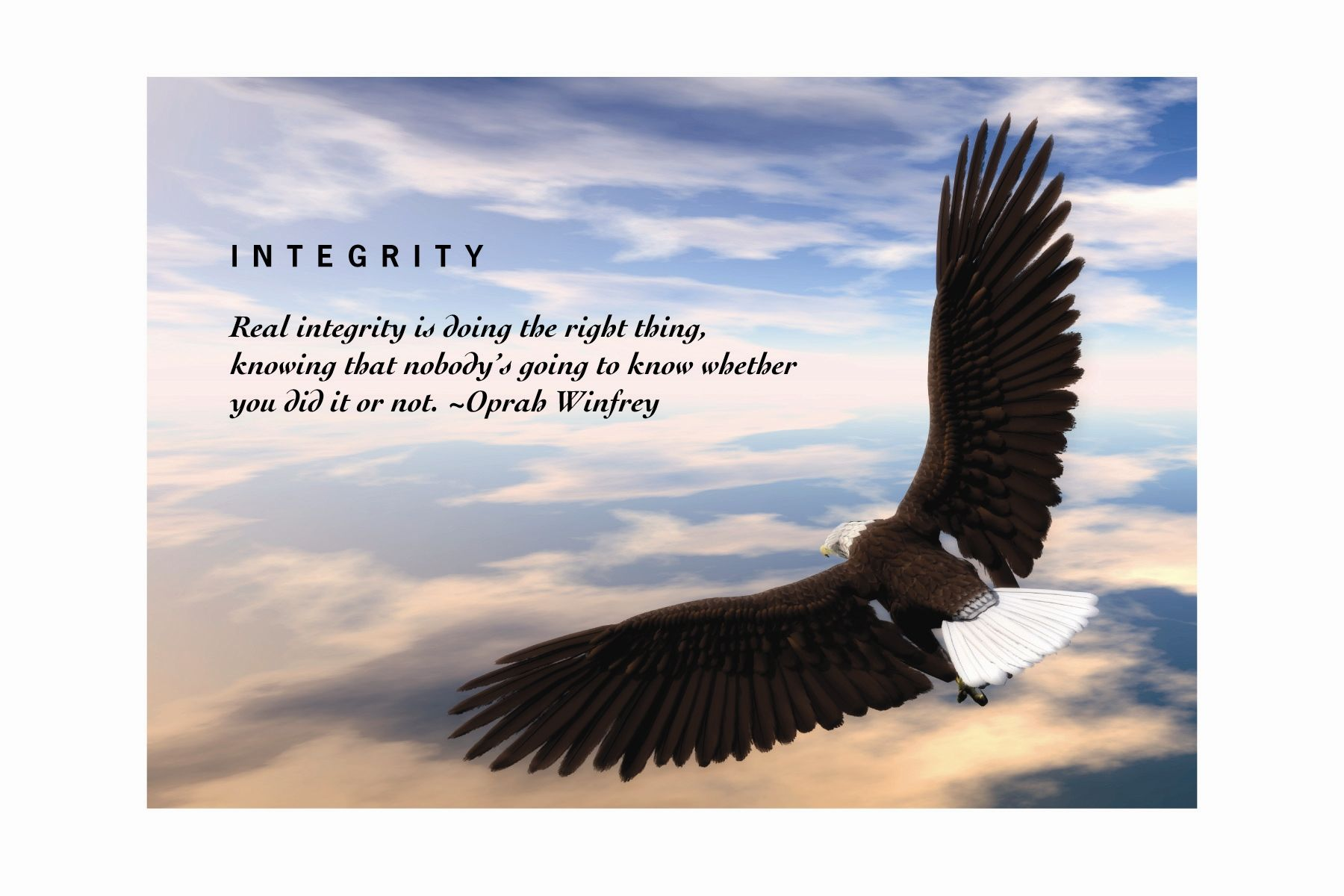 Quotes Integrity Google Search Integrity Quotes Eagle Integrity