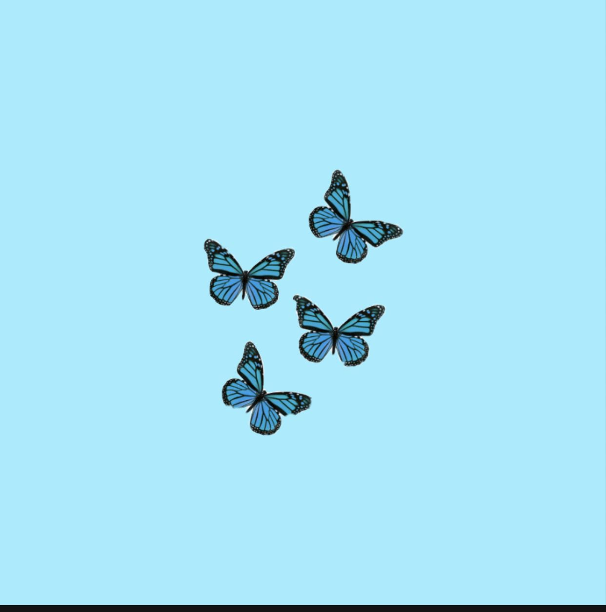 Aesthetic Butterfly Wallpaper Blue Butterfly Wallpaper Butterfly Wallpaper Iphone Baby Blue Aesthetic