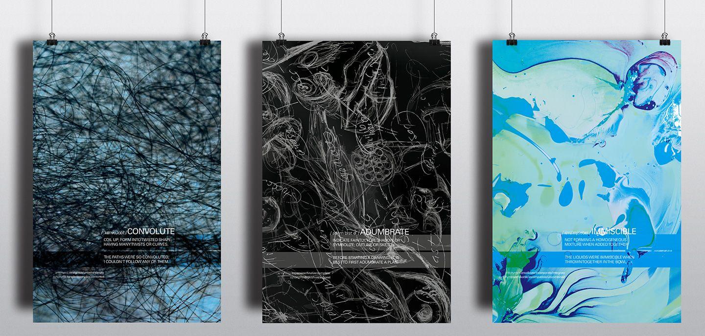 Stephanie Pacheco, Graphic Design 3, 2013, Umass Dartmouth