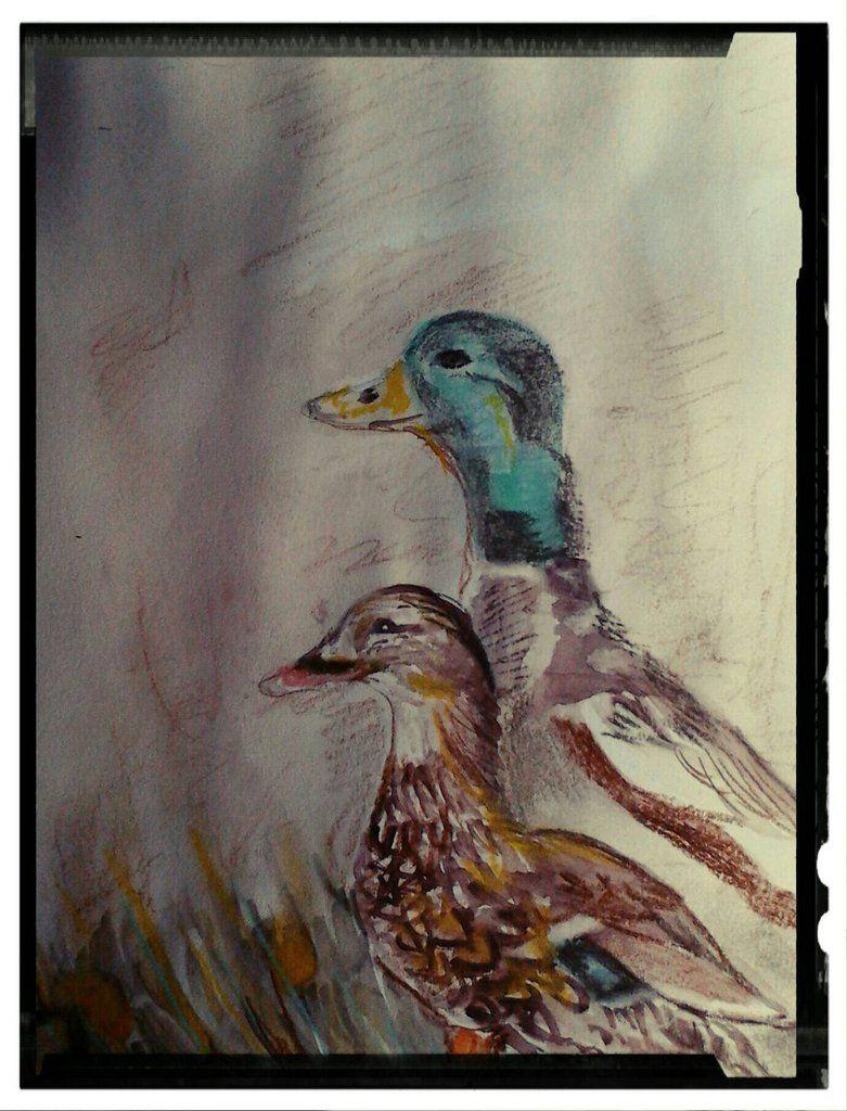 Ducks: For church group by fbforbill on DeviantArt