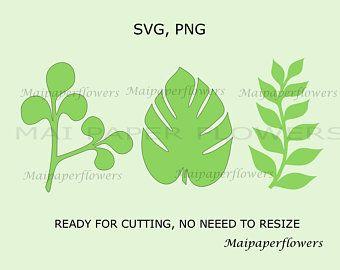 Paper Flower Leaf Template, Flower Leaf Template, Paper Flower Leaf, Flower Leaf Svg, Flower Leaves #leaftemplate