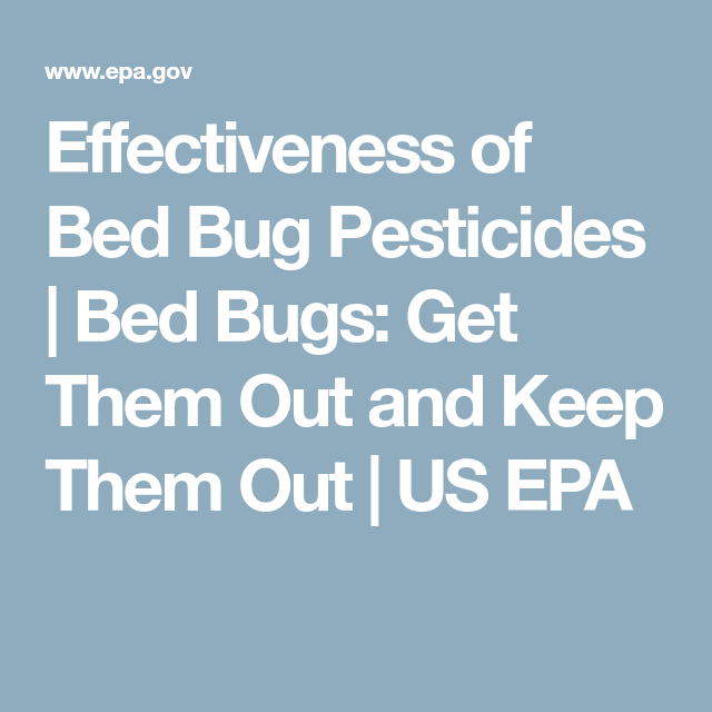 Effectiveness Of Bed Bug Pesticides Bed Bugs Get Them Out And