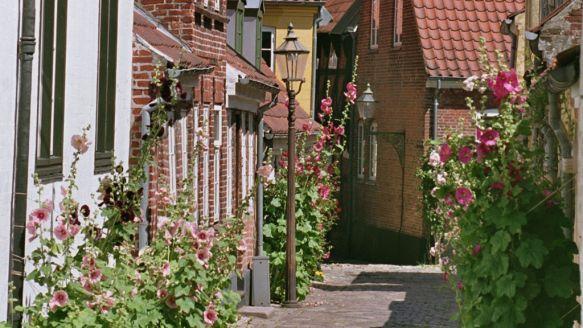 Velbevaret Middelalderby Ribe Road Structures Alley