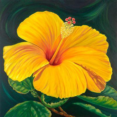 hawaiian hibiscus flowers some yellow hibiscus hawaii state