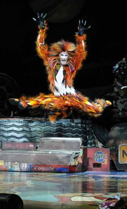 Andrew Lloyd Webber's Cats | LondonMusicalTickets.com