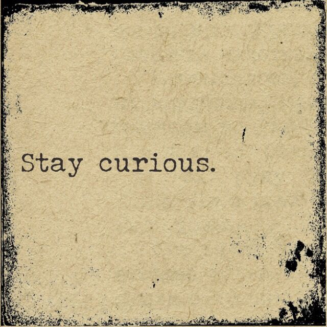 Stay Curious: Ten Questions to Learn about the World | Globally Human