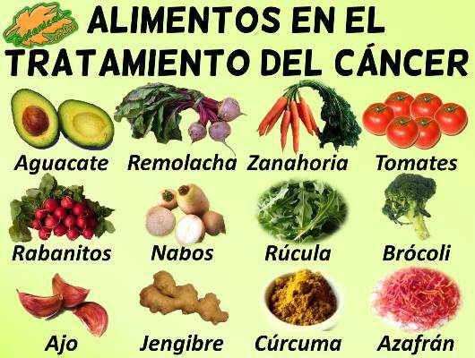 alimentos naturales para luchar contra el c ncer dieta