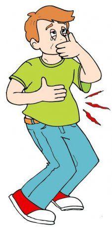 Enfermedades con sintomas de fiebre y vomitos