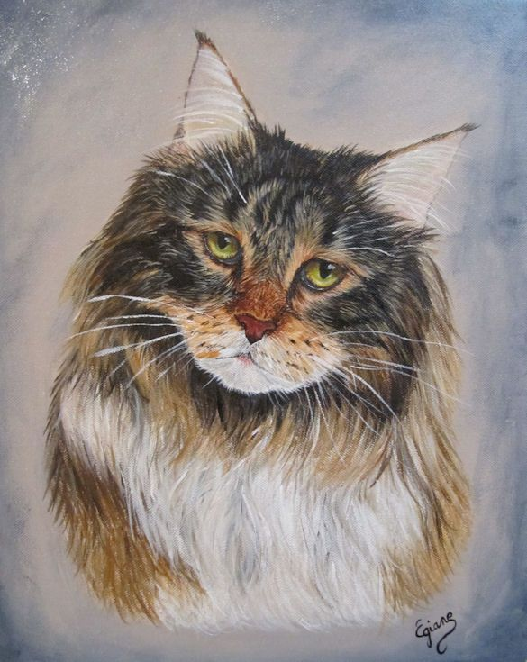 Peintre Animalier Chat #7: Portrait Chat, Peintre Animalier, Portraitiste Animalier, Main Coon, Chat,  Art Animalier