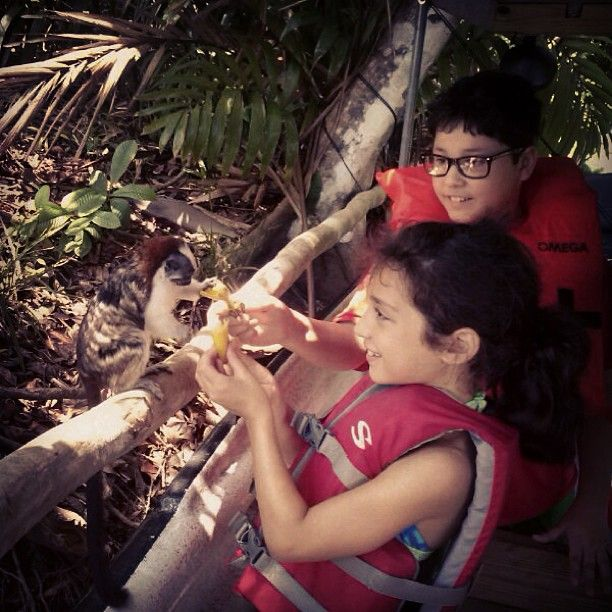 "This picture from today's ""Jungle Canal Day Tour"" is what we call LIVING the Panama Canal! Two kids feeding a Geoffroy's tamarin monkey."