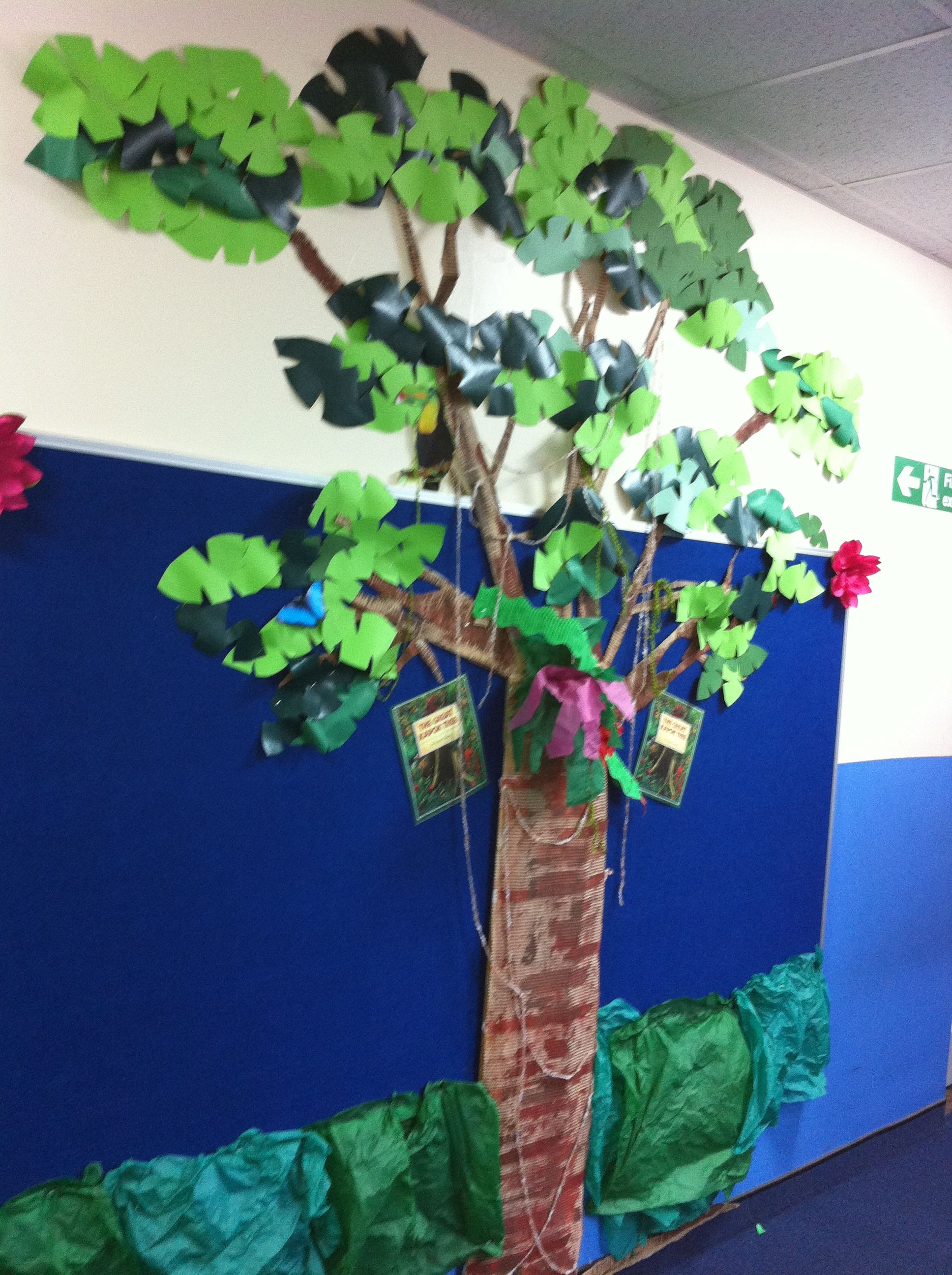 The Start Of A Display Based On The Great Kapok Tree For Our Rainforest Topic