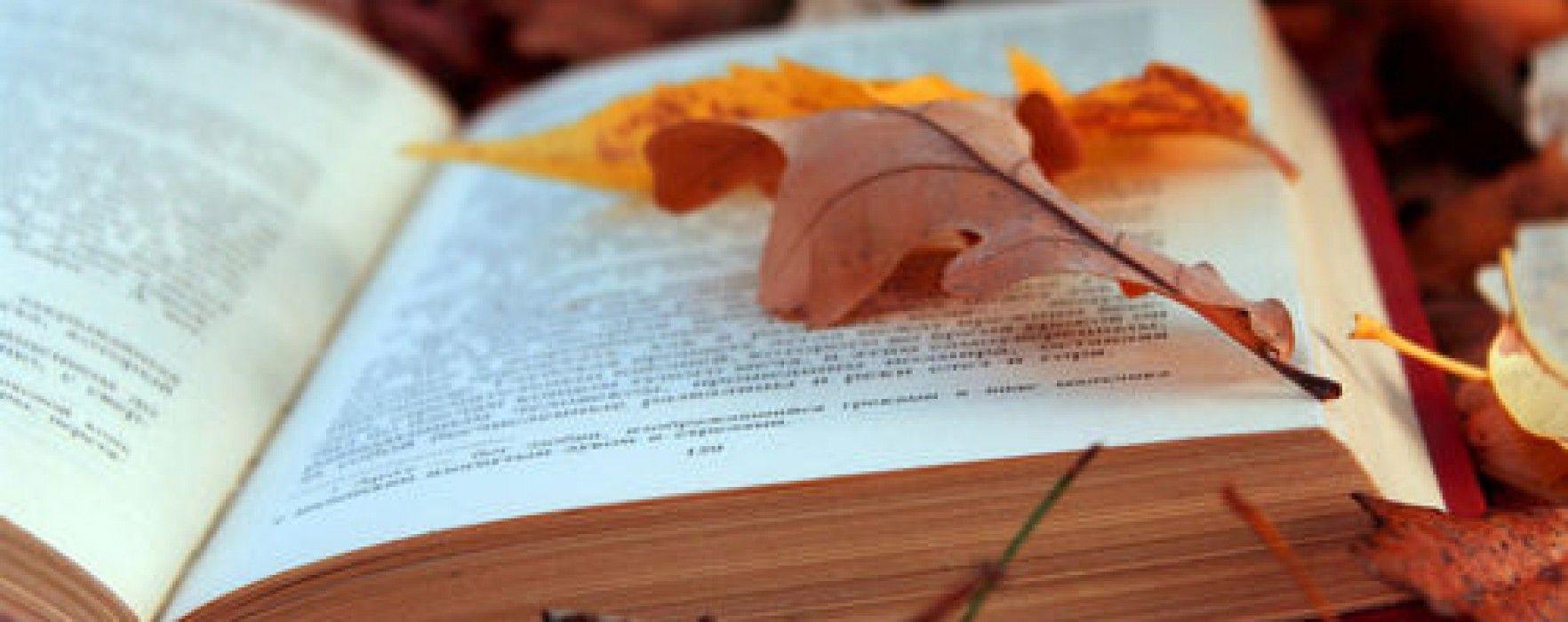 Anche settembre si avvia a conclusione e l'estate lascia lo spazio all'autunno. Ma per chi ama la lettura questo significa anche domenichepassate a casa sul divano con un buon libro. S…