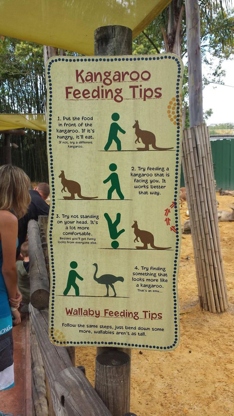 20 funny zoo signs which probably have some incredible stories