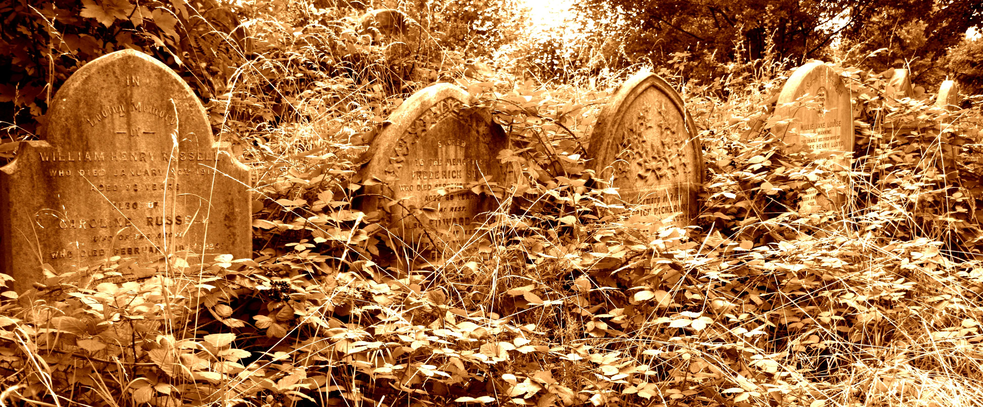 Ladywell Cemetery, London