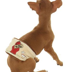 Diapers For Pets Pet Diapers Male Dog Diapers Dog Belly Bands