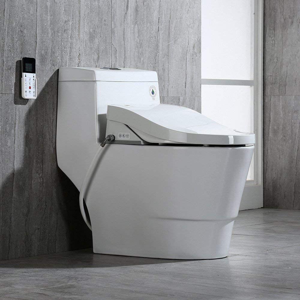 5 Best Bidet Toilet Combo Reviews 2020Buyer's Guide