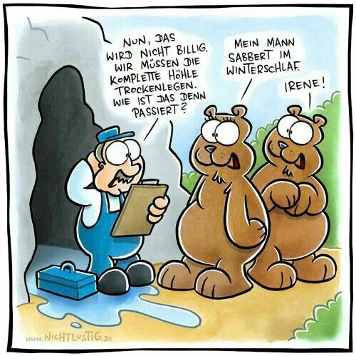 Fliesenleger lustig  Joscha Sauer Bären | NichtLustig | Pinterest | Joscha, Bären und ...