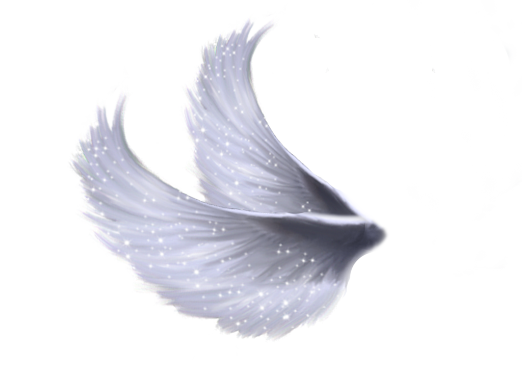Wings Png 5 By Moonglowlilly On Deviantart Wings Png Angel Wings Clip Art Angel Wings Png
