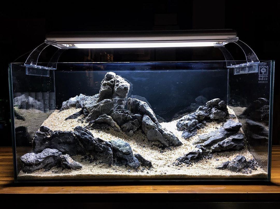 Aquascaping Aquascape Aquarium Layout Com Rochas Criado Durante O Workshop Aquabase Modulo 02 Layout With Aquascape Aquarium Aquascape Design Biotope Aquarium