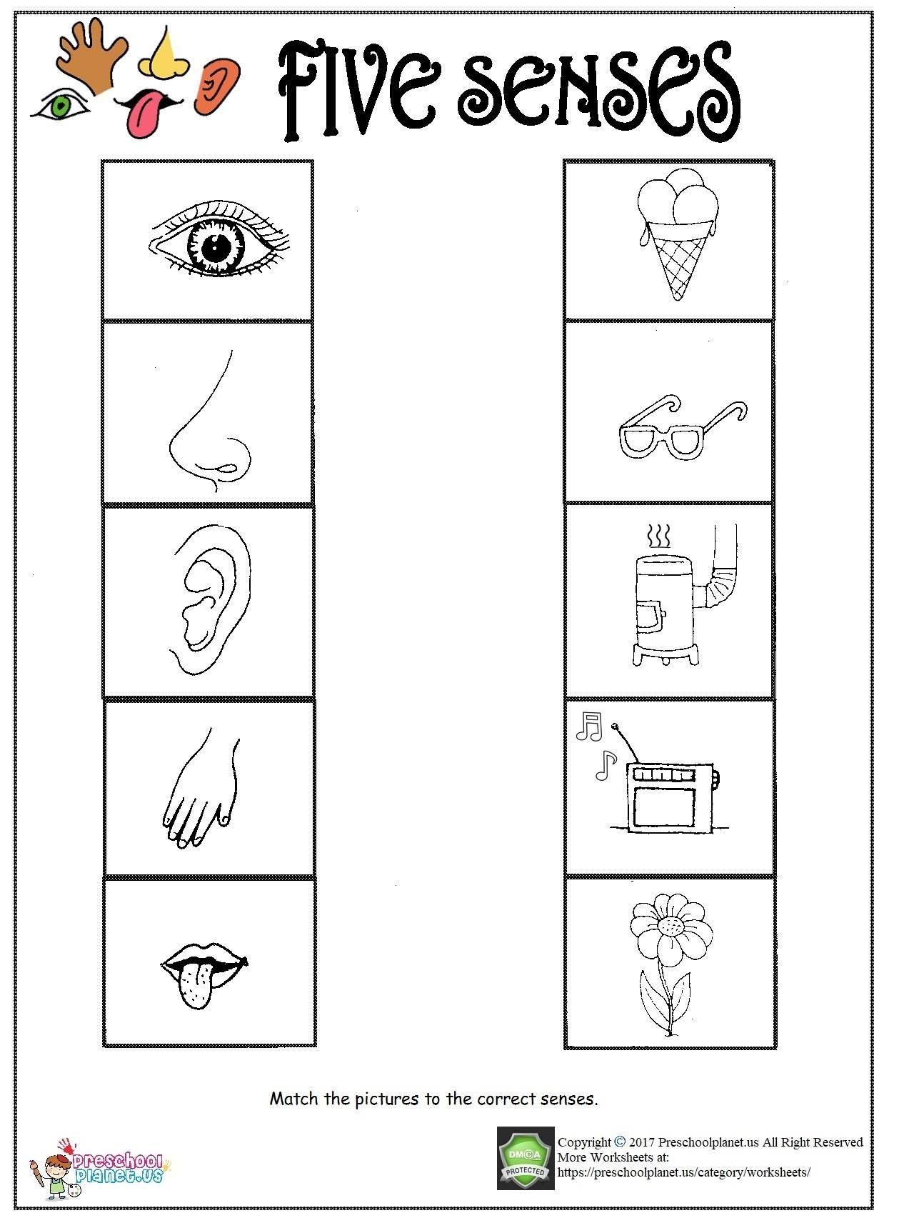 Printable Five Senses Worksheet Preschoolplanet In