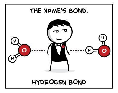 The name's Bond   Science humor and Science jokes