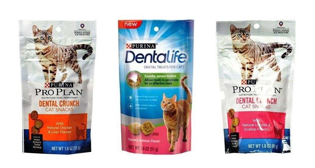 Purina Pro Plan Dental Crunch Dentalife Treats For Cats 3 Flavor Variety Bundle 1 Each Chicken Liver Savory Salmon L With Images Flavor Variety Dog Snacks Cat Snacks