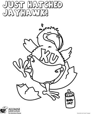 Jayhawk Coloring Sheets Ku Alumni Association Coloring Sheets
