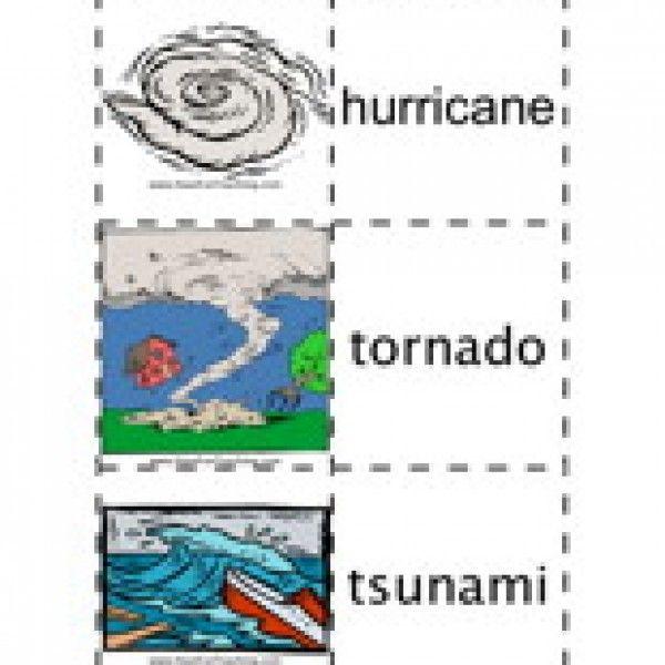 Natural Disasters Flash Cards | Natural disasters and Natural