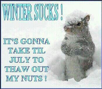 Nuts are frozen