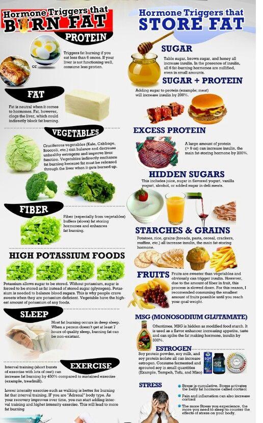 Fit4life diet