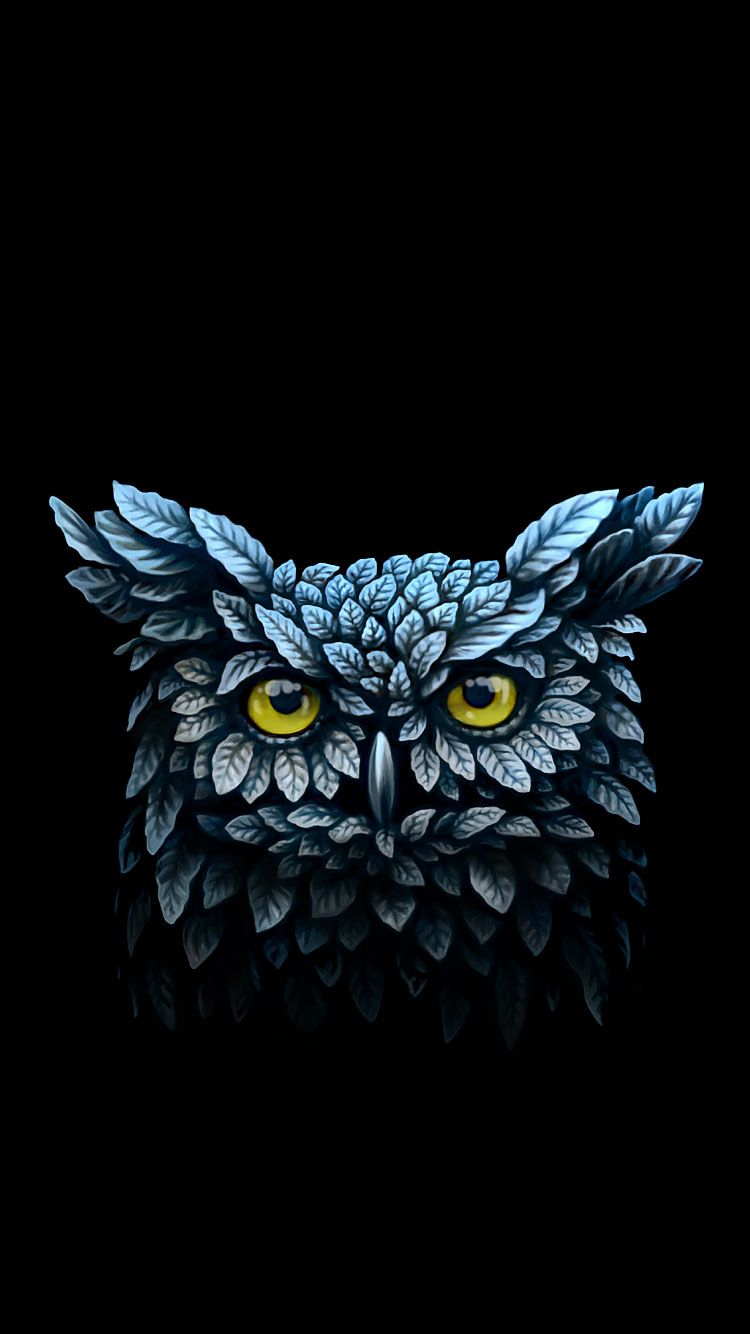 25 Best Cool Iphone 6 Wallpapers In Hd Quality Owl Wallpaper Iphone Owl Wallpaper Cool Iphone 6 Wallpapers